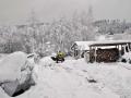 Our backyard in winter